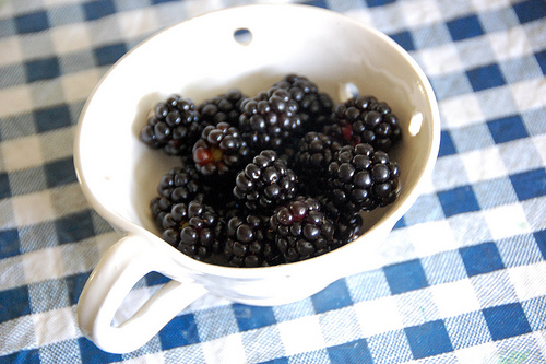 the last of the black berries