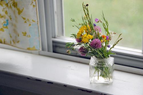 on my windowsill