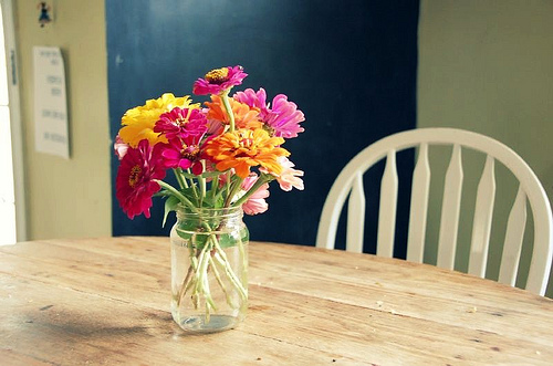 zinnias on the kitchen table