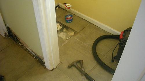 bathroom project underway